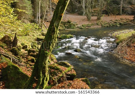 A small river flows through a wild landscape with tree - stock photo