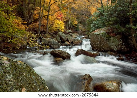A small secluded cascade in the forests of Virginia. Taken with a slow shutter speed to soften the water. Lots of detail in the water as it swirls across the rocks on its way downstream. - stock photo