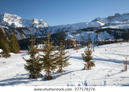 A small spruces near mountain ski resort Courchevel 1850, France - stock photo