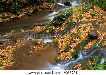 a small stream with beautiful golden leaves laying around during fall of the year. - stock photo
