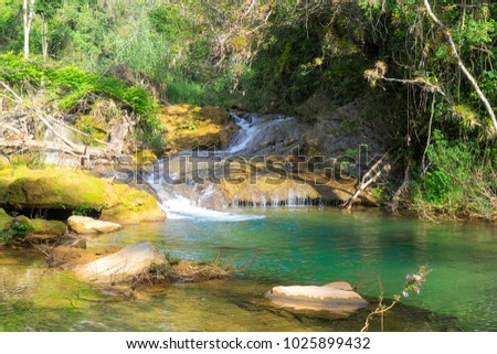 A small waterfall in a forest lake, water flows down the trees d