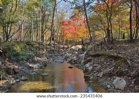 A small woodsy river. An autumn. - stock photo