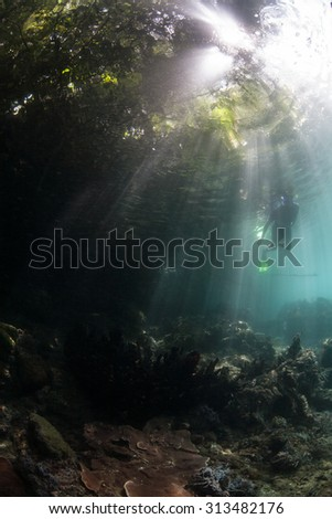 A snorkeler swims through beams of light in a shallow channel in Raja Ampat, Indonesia. This area is known for its spectacular marine biodiversity and world class scuba diving and snorkeling.