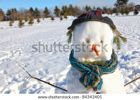 A snowman well dressed for winter with a scarf and winter hat. - stock photo