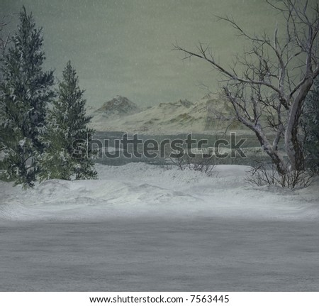 A snowy winter scene.