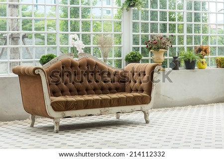A sofa with various kind of plants behind - stock photo