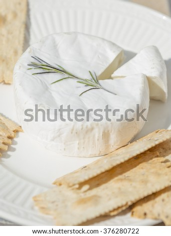 a soft goat cheese  on a plate with crackers and a cut wedge - stock photo