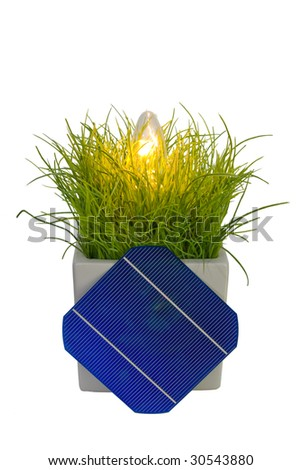 A 5 Solar-Cell powering a bulb in flower pot - stock photo