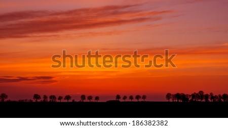 A spectacular, vivid sky at sunset  - stock photo