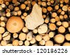 A stack of firewood prepared for winter - stock photo