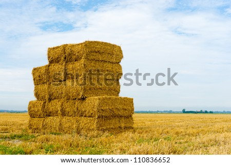 A stack of hay bales in a rural landscape - stock photo
