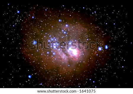 A Star is Born - stock photo
