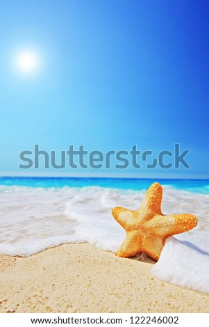 A starfish on a beach with clear sky and wave, Greece