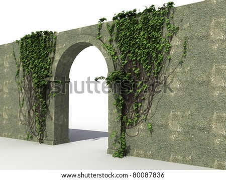 A stone wall with ivy 1 - stock photo