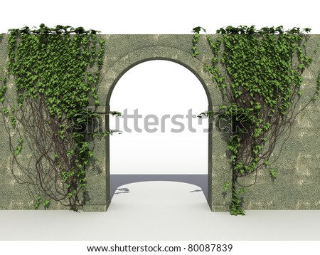 A stone wall with ivy  - stock photo