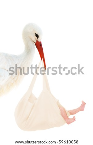 A stork holding a linen bag with a baby in his beak - stock photo