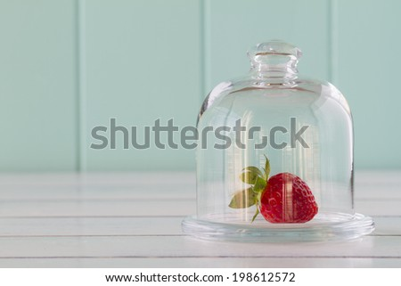 A strawberry in a glass bell jar on a white wooden table with a robin egg blue background. Vintage Style. - stock photo