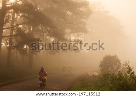 A street in early morning fog, Da Lat, Lam Dong, Vietnam.  The city is located on the Langbiang mountain in the southern parts of the Central Highlands region. Da Lat is a popular tourist destination. - stock photo