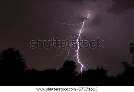A stroke of branched lightning shoots out of the cloud and strikes the trees below.