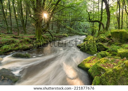 A sunburst through the trees on the banks of the river Fowey as it flows through Golitha Falls a steep wooded valley on the southern edge of Bodmin Moor in Cornwall - stock photo