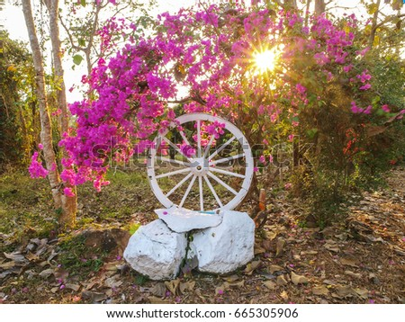 A sunlit entrance to a house with purple paper flowers, a large cart wheel and stone painted white, near Chanthaburi, east Thailand