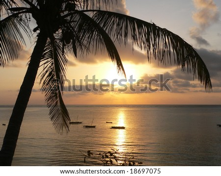 A sunrise over Indian Ocean in Kenya with a cocoa nut palm in foreground - stock photo