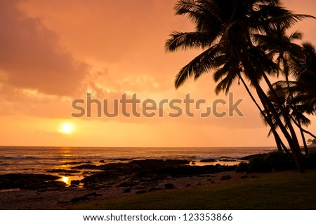 A sunset on the Big Island with silhouetted palm trees and beach. - stock photo