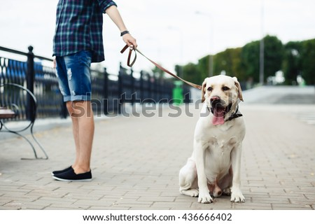 a teenager and a dog, friendship, young guy and a white labrador on the river bank