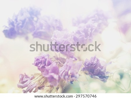 A tender background with purple and white bouquet (may be used as a wedding invitation) - stock photo