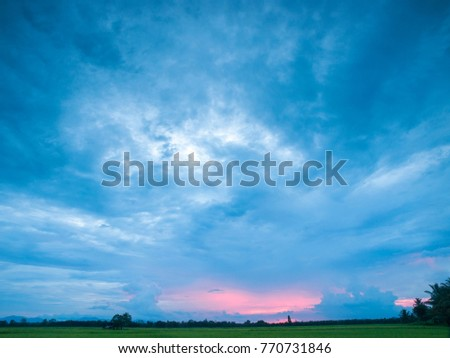 A Thai rice field with large sky at sunset for text placement