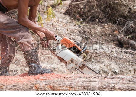A Thai worker cutting trunk with chainsaw