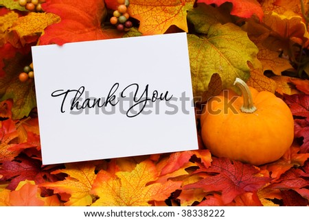 A thank you card with a gourd sitting on a fall leaf background, thank you