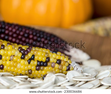 A Thanksgiving themed still life with corn, pumpkins, pumpkin seeds and a turned ash wood bowl. - stock photo