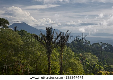 A thick rainforest in north Sulawesi, Indonesia, stretches into the distance towards volcanoes. - stock photo