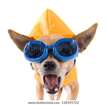 Yellow Rain Hat Stock Images Royalty Free Images