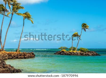 A tiny rock island with palm trees off the coast of Kahala Beach on the south shore of Oahu, Hawaii - stock photo