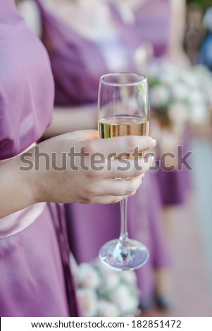 A toast to newlyweds at the wedding - stock photo