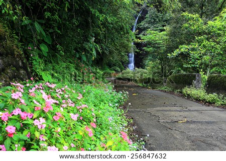 A track leading to a mysterious forest and waterfall - stock photo