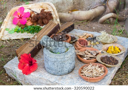 A traditional Ayurvedic apothecary with stone mortar and pestle, herbs and spices. - stock photo