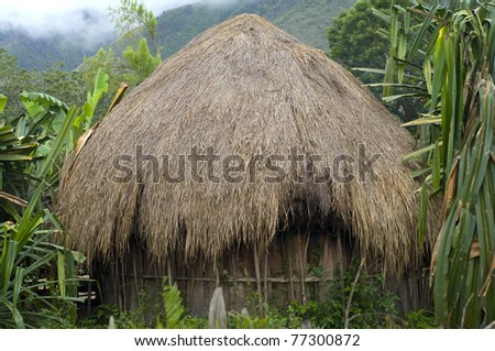 A traditional hut in an  mountain village. New Guinea - stock photo