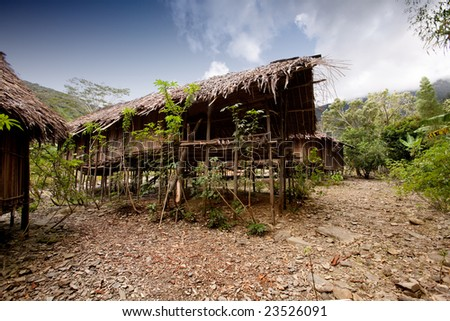 A traditional village hut in Papua, Indonesia - stock photo