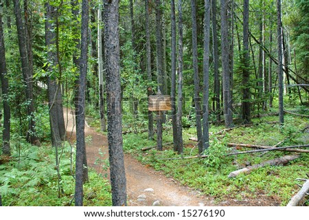 A trail in the Rocky Mountain National Park. - stock photo
