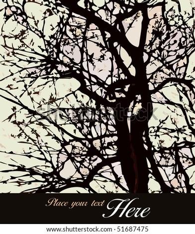 A tree - stock photo