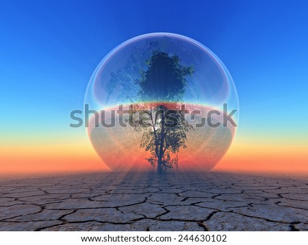 a tree inside a  bubble on sunset background  - stock photo