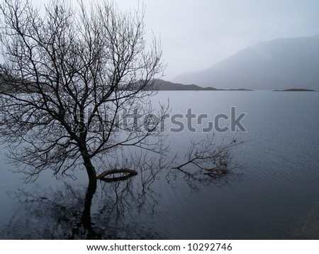 A tree standing in a loch in the Scottish Highlands - stock photo