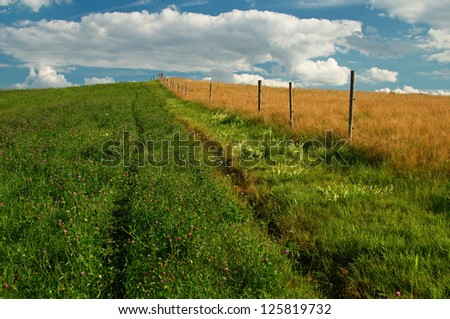 A trip around the wooden fence between the field of flowering clover and meadow with a dry grass - stock photo