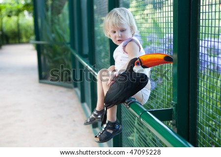 a tucan and a girl - focus in tucan - stock photo