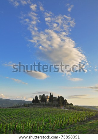 A tuscan landhouse next to a wineyard in Greve / Italy - stock photo