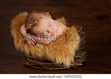 A two week old newborn baby sleeping in a twig basket and wearing a twig crown. - stock photo