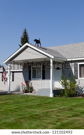 A typical American home with a typical family dog guarding it from the roof. - stock photo